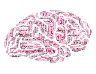 Gehirn Feeling Habit Memory